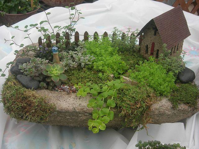Small Fairy Garden