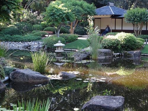 Japanese Gardens-Brisbane