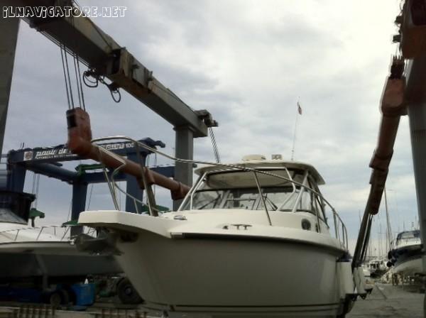 BOSTON WHALER 305 CONQUEST - ilnavigatore.net #annunci #barche
