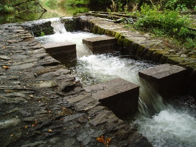 water turbine, aesthetically pleasing sustainability ideas