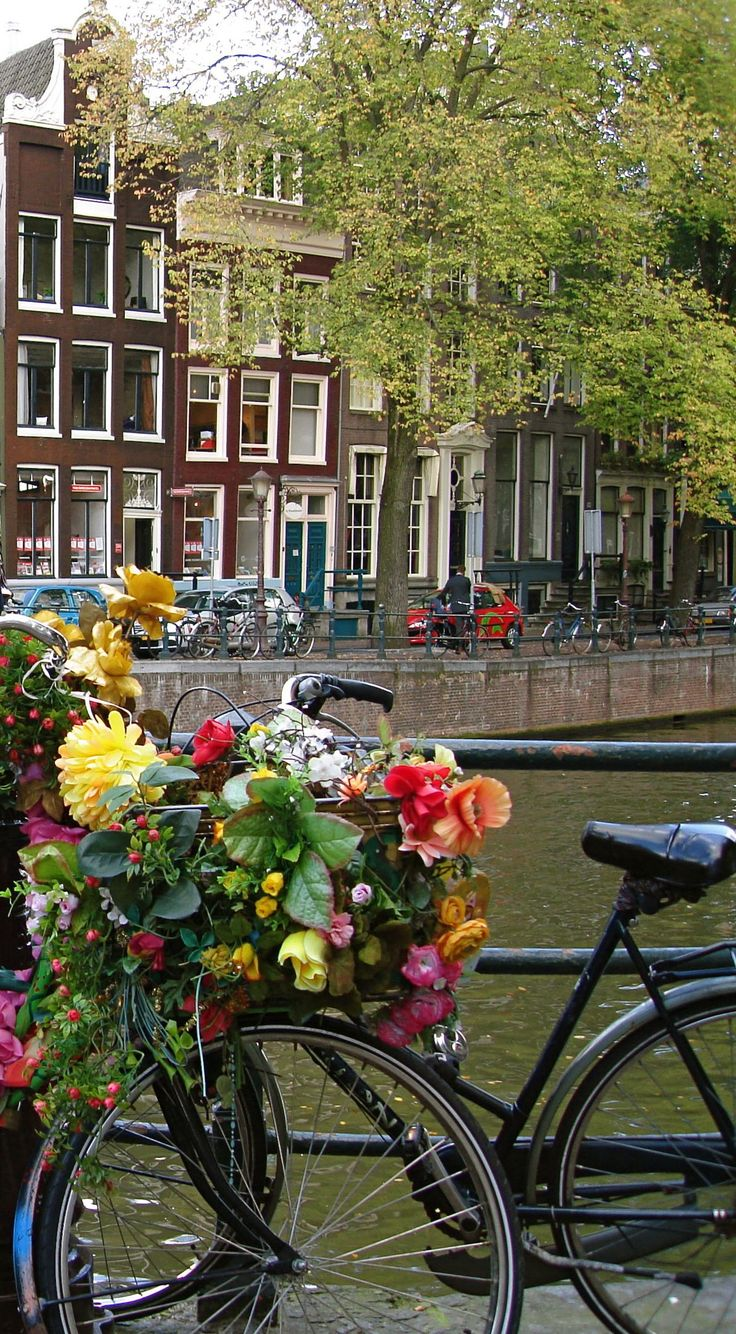 Amsterdam, a beautiful and creative city where   flowers can be found anywhere and everywhere...