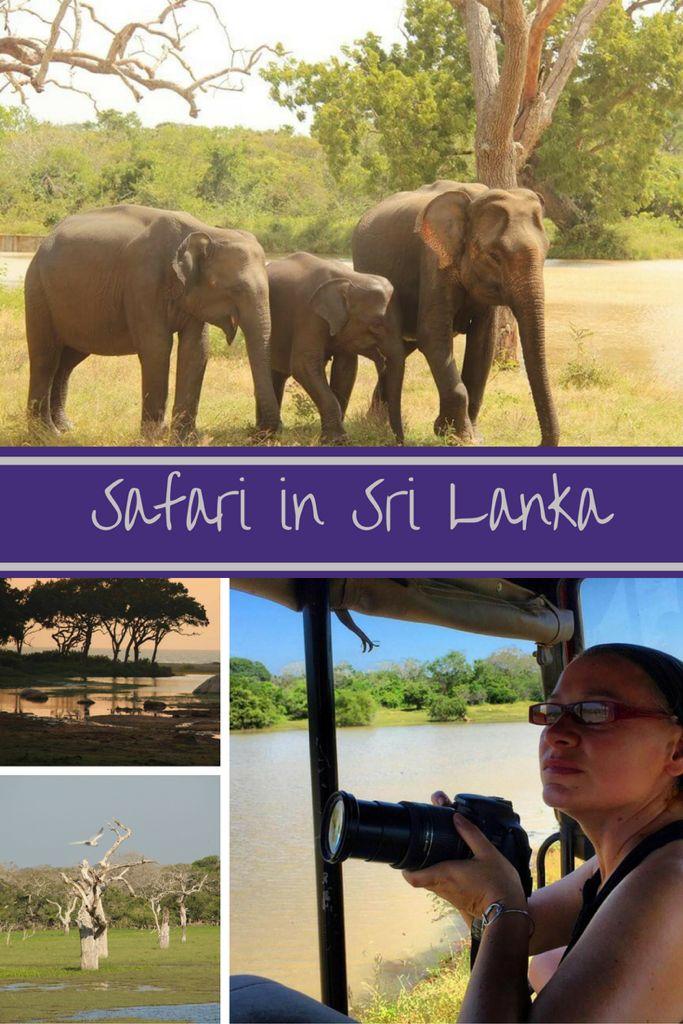Safari in the Yala National Park in Sri Lanka