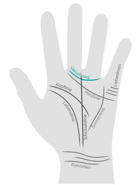"""<p/><h2>Handlesen: Venus-Ring</h2><p/><p><b>Wie steht es um Ihre Beziehungen?</b></p><p>Der Venus-Ring verrät es beim Handlesen! Er verläuft im Bogen zwischen Zeige- und Mittelfinger und gibt Auskunft über <b> <a href=""""/artikel/939447/ansicht.html"""">Ehe</a"""
