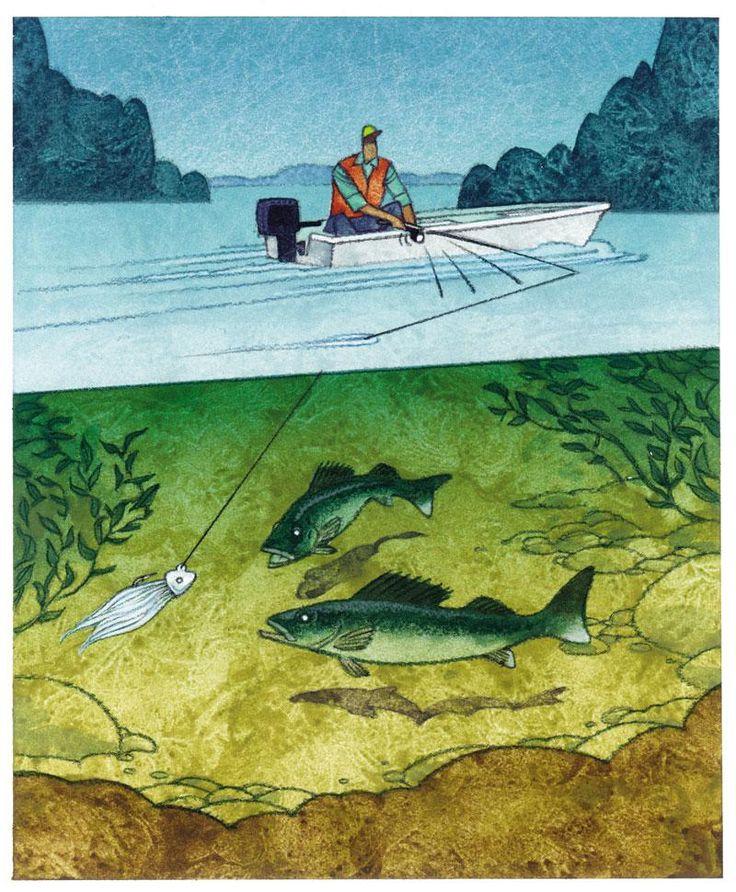 65 best kayak fishing images on pinterest bait bass for Walleye fishing tips