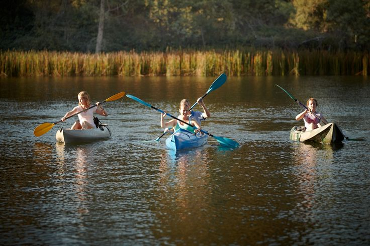 Camping & Fishing - Wangaratta & Surrounds