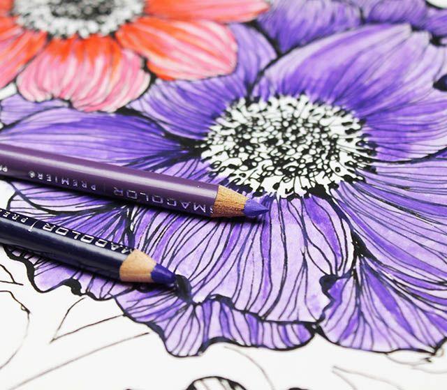 alisaburke: colored pencils: a few tips and tricks