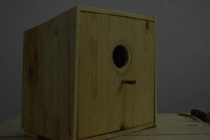 BIRD HOUSE__