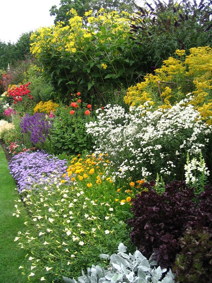 Flowers Garden Pictures Ideas garden design garden ideas creepers Find This Pin And More On Flower Garden Pictures