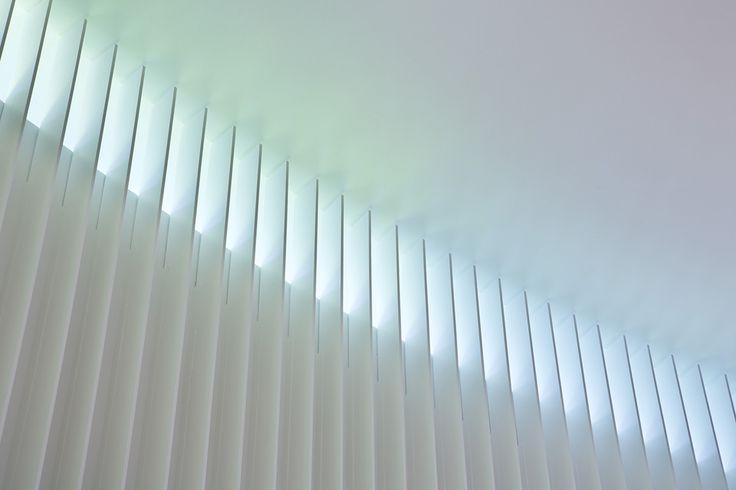 光の現象で装飾をつくる 恵比寿にある結婚式場の改修プロジェクトです。建物は、バブル期に隣接していた高級会員制サロンの別館として建てられ、その後運営者が代わりながら主に結婚式場として使われていました。新しいオーナーからは、既存施設の過剰な装飾をなくし、自然光が感じられるデザインが求められました。そこで、教会部分では楕円形の平面とハイサイドライトという既存躯体の特徴を最大限生かしながら、光によって装飾をつくることを考えました。ハイサイドライトの窓台を色分けして塗装することで、内部空間に入る間接光にほのかに色が加わります。壁面につけたリブに彩色された光があたり、虹のような光が内部空間に立ち現れます。 虹は聖書で約束の象徴とされています。物質的な装飾ではなく、「光を装飾する」という発想によって現代的なセレモニー空間へと生まれ変わらせました。