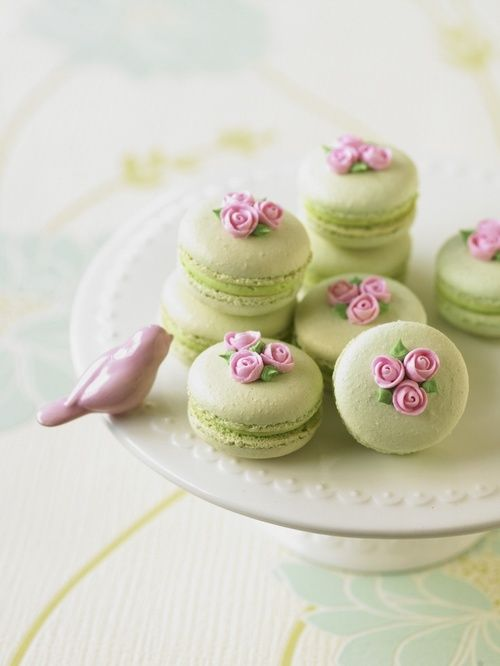 Pale green camarons with delicate rosebuds