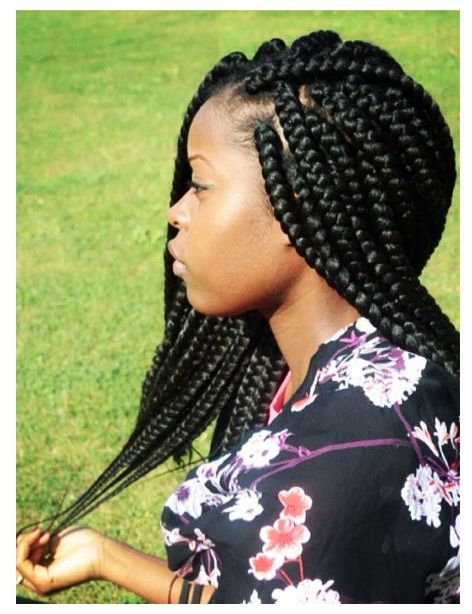 Cornrows Fulani Braids Hairstyles 2018 You Should Try Cute Lemonade