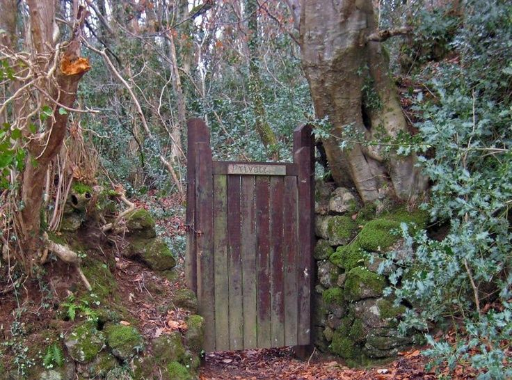 25 best fence images on pinterest wood fences wooden for Rustic fence ideas