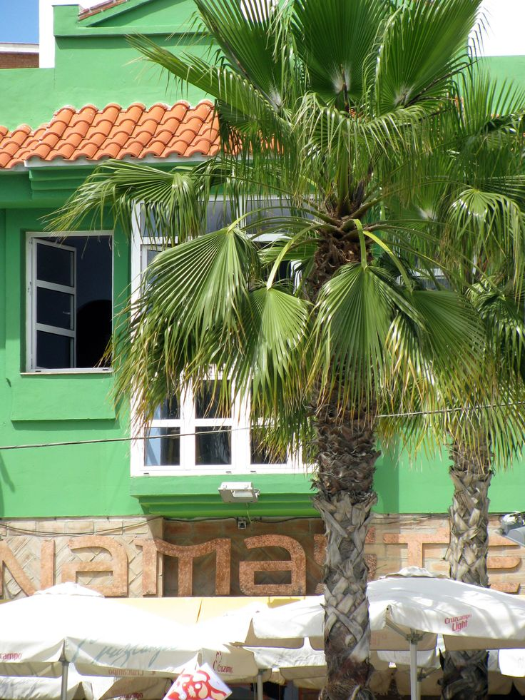 TROPICAL GREEN - - Playa de Pedregalejo, Malaga, Spain