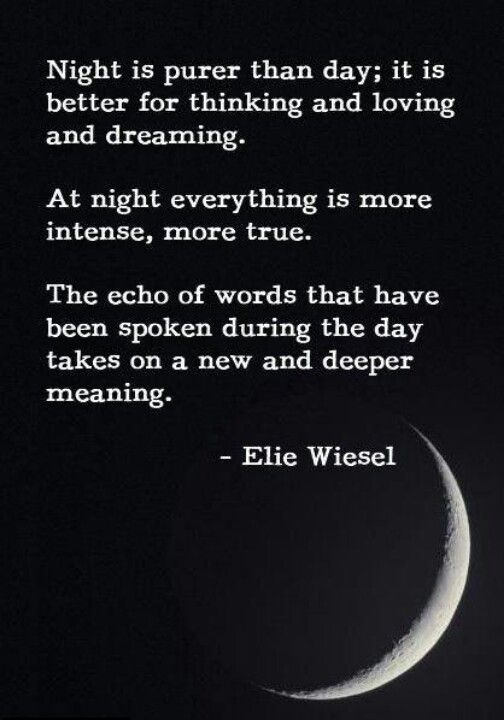 Holocaust Quotes Stunning 101 Best Wiesel Elie Images On Pinterest  Elie Wiesel Night Night . Design Inspiration