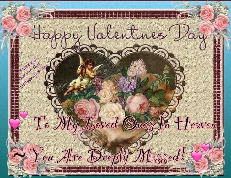 valentine one valentine one v1 user manual