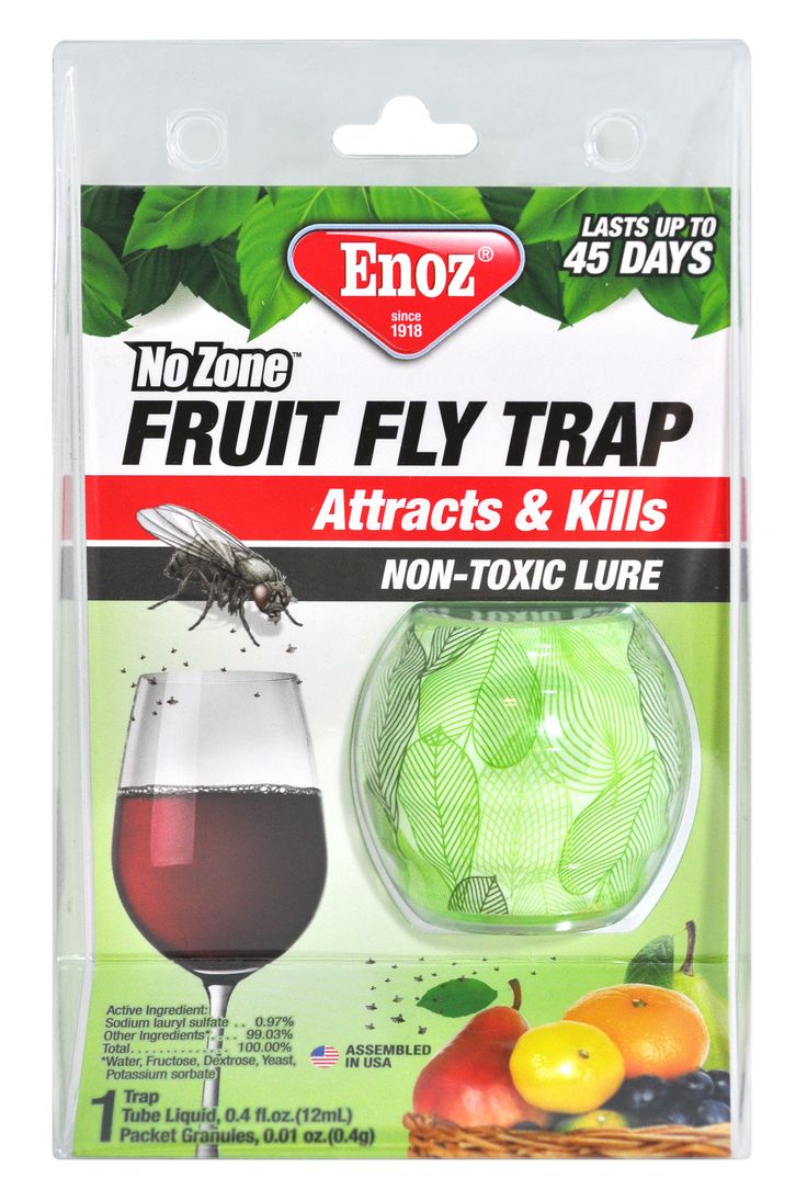 25 best ideas about fruit flies on pinterest fruit flies in house best fruit fly trap and. Black Bedroom Furniture Sets. Home Design Ideas