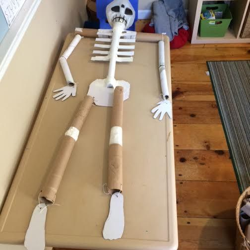 Skeleton project Reggio Documentation Loose Parts Early Childhood Education
