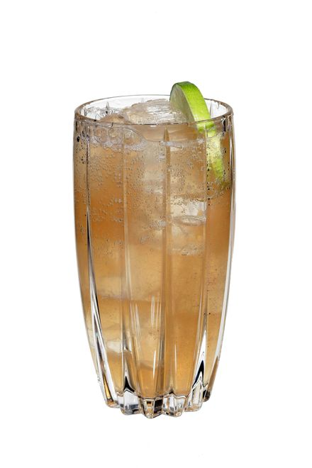 to make an el burro use patron reposado tequila, freshly squeezed lime juice, sugar syrup (2 sugar to 1 water), angostura aromatic bitters, gosling's stormy ginger