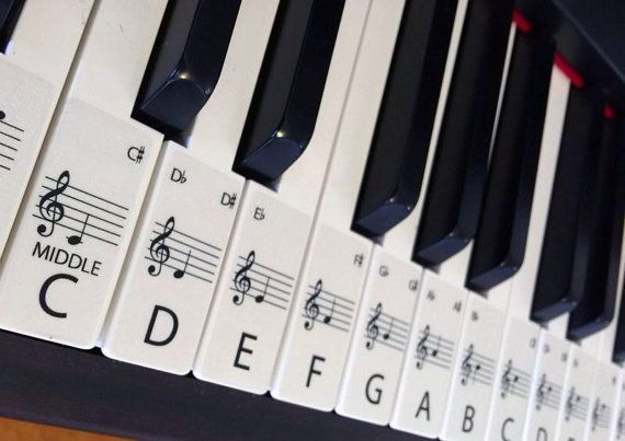 This set of label stickers is for a 88 key piano or keyboard, Labels are in order ready to be placed on the keys with middle C highlighted for easy reference. Labels are easily removed if needed. Each Label is 20mm wide x 48mm long. These labels are on a transparent film.   The labels will help anyone wanting to learn piano, with the letter of the key and note placement on the bar to aid and help speed up the process of learning piano.  LET'S MAKE PIANO EASIER SO MORE CAN ENJOY ITS BEAUTIFUL…