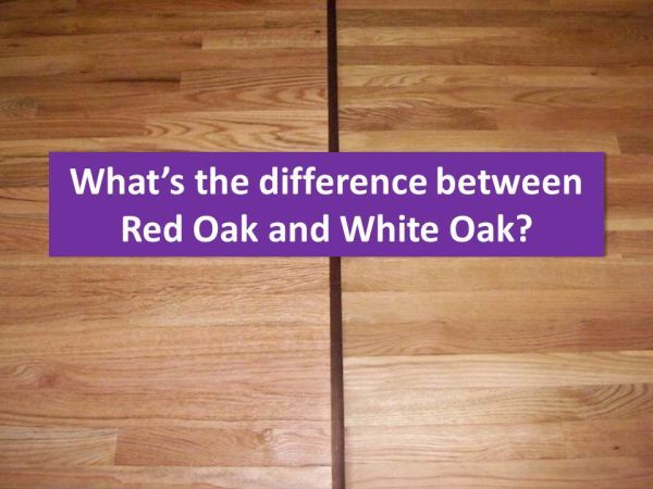 red oak compared to white oak flooring