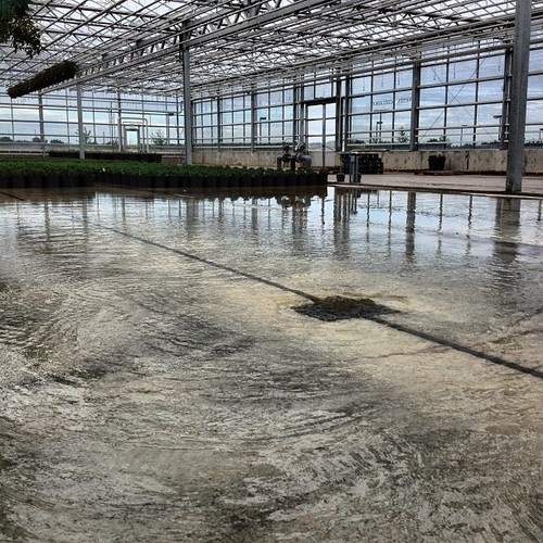 My cellphone sees: Flood floors flooding behind-the-scenes at Hole's.