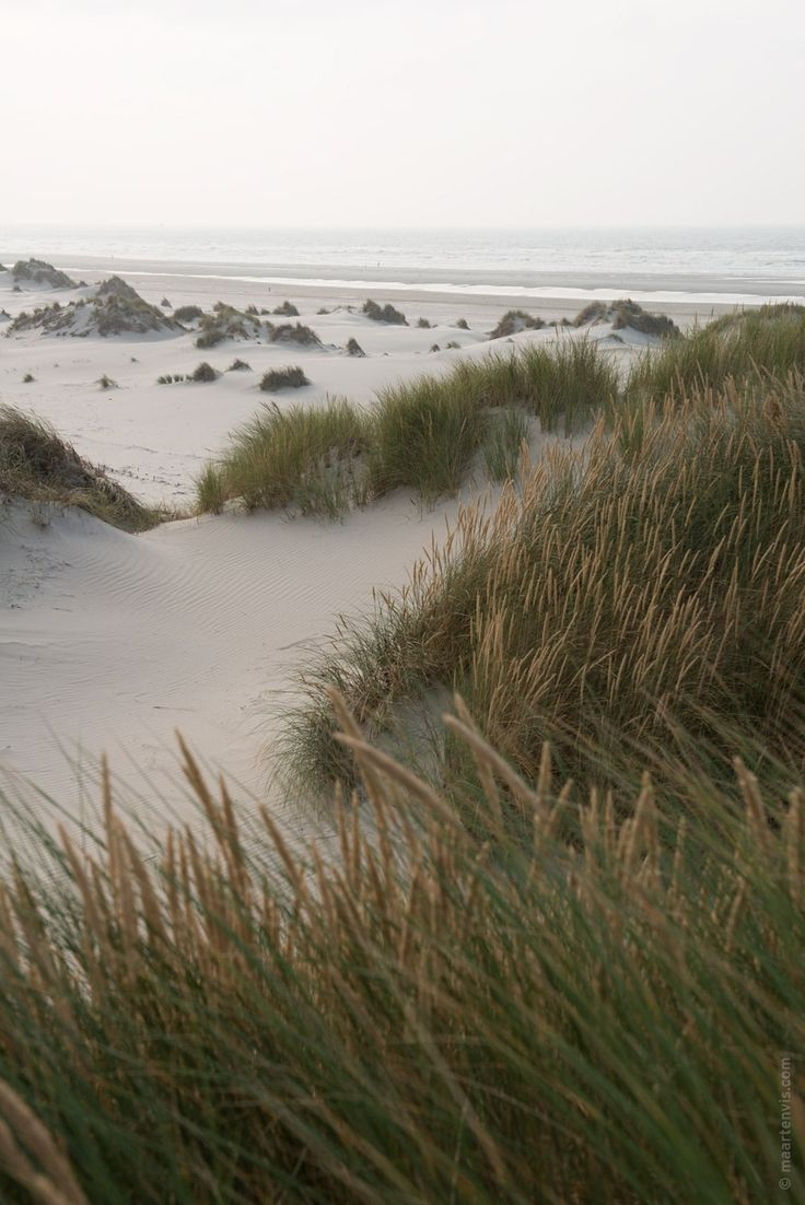 Off season Terschelling has it all: Beautiful cycling routes, amazing endless beaches, hiking paths through stretches of dunes and cranberries.