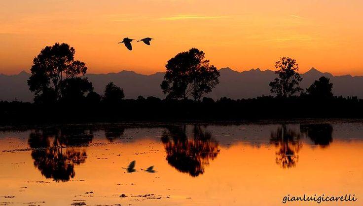 Veniteci a trovare, regaliamo tramonti così. Pic: Gianluigi Carelli. #Lomellina #natura #ambiente #Pavia #Milano