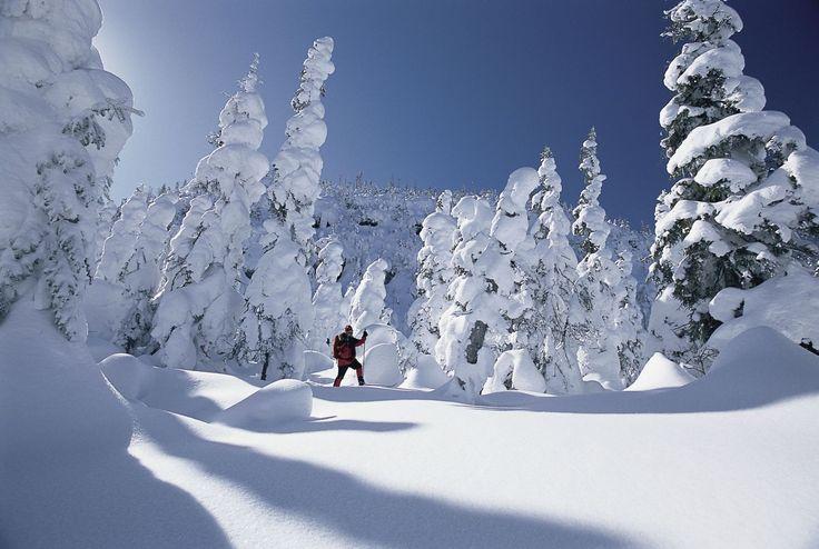 Vallée des fantômes, Parc national des Monts-Valin, Saguenay Qc Canada