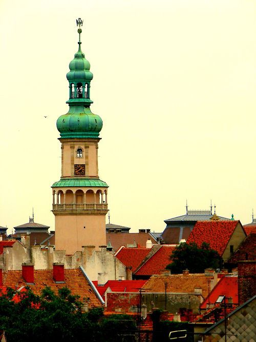 The town of Sopron, dominated by the firewatch tower.