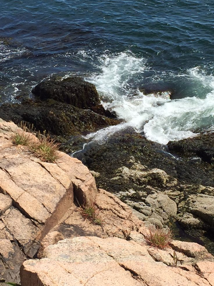 Pin by Susan Wood on Northern coast of Maine, Mount