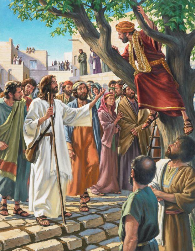 Pictures Of Zacchaeus