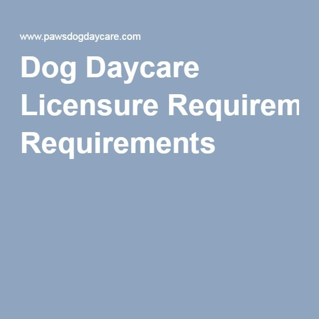 Dog Daycare Licensure Requirements