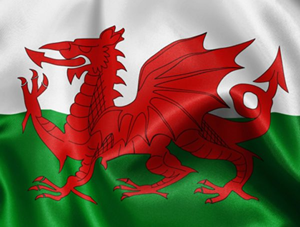 The Welsh flag was granted official status in 1959, but the red dragon itself has been associated with Wales for centuries.