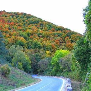 Lovely autumn road