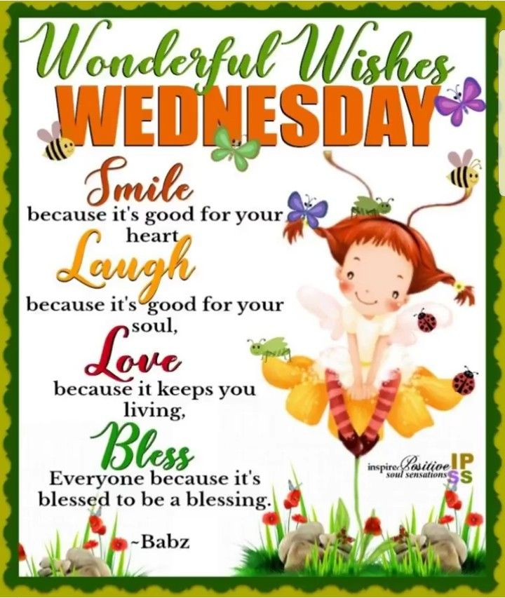 Image result for wonderful wednesday