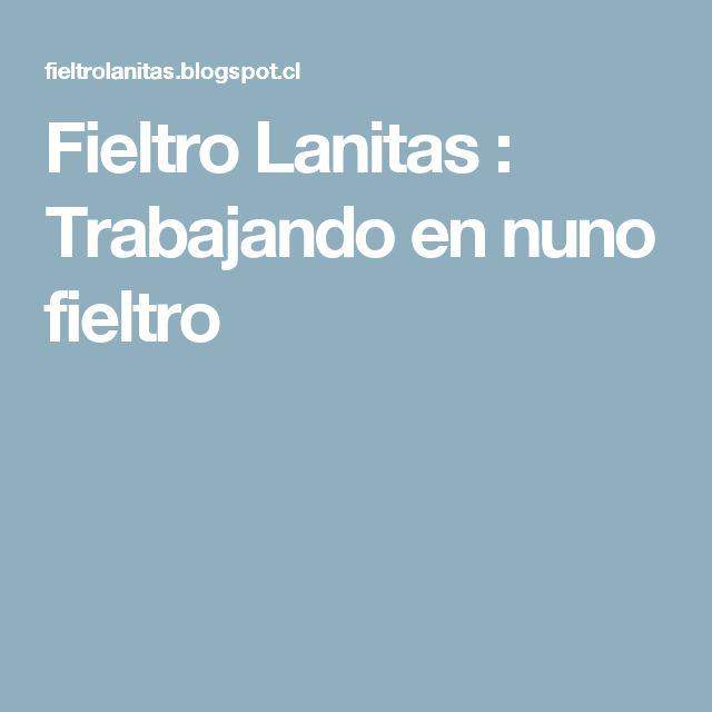Fieltro Lanitas : Trabajando en nuno fieltro