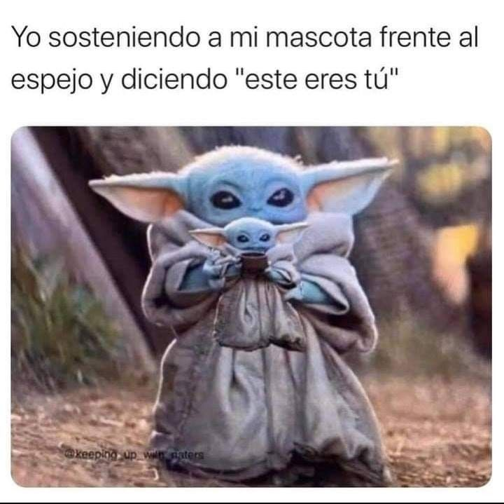 Pin By Yessy Maa On Cosas Que Dan Risa Yoda Funny Funny Memes Funny Relatable Memes