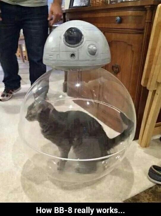 Star Wars The Force Awakens Memes