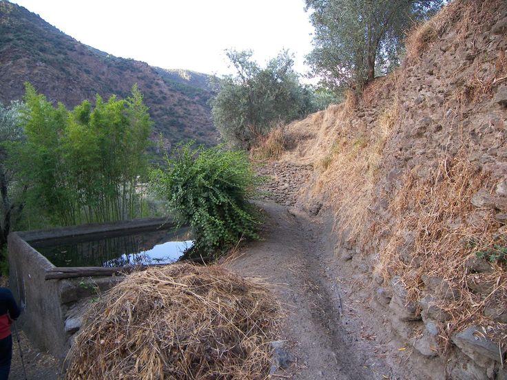 sembrar agua: 20 abril 2014