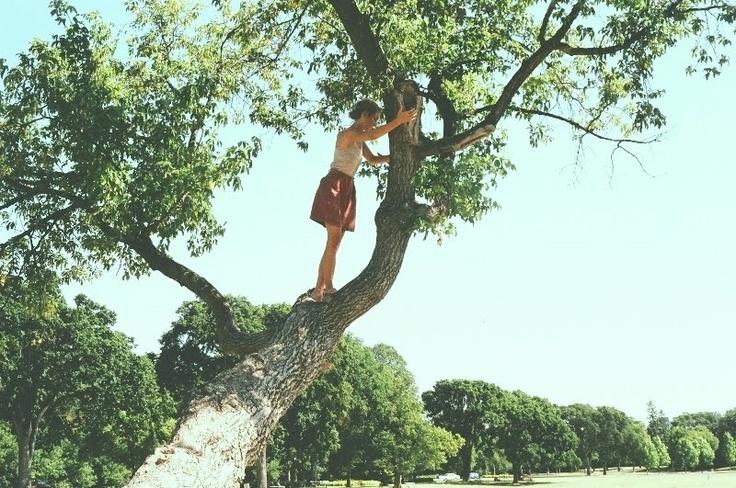 climb a tree //: