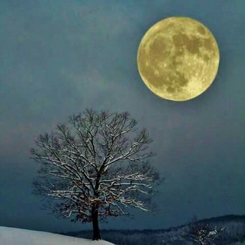 Full 'Blue' Moon and Supermoon.  31 January 2018.  (The two together at the same time hasn't happened in 150 years, See: 1868.)  4:54 a.m. EST (0954 GMT) on Jan. 30, at a distance of 223,069 miles (358,995 km) from Earth, according to EarthSky.org. Then, on Jan. 31, the moon reaches its full phase at 8:27 a.m. EST (1327 GMT) coincides with a total lunar eclipse.
