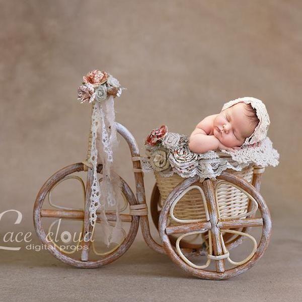 Digital Backdrop Background Baby Girl Basket Flowers Bicycle Newborn Baby Photoshoot Baby Photoshoot Newborn Baby Photography