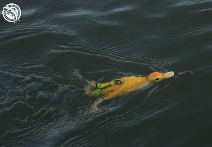 Savage Gear 3D Suicide Duck #wędkarstwo #przynęty #szczupak