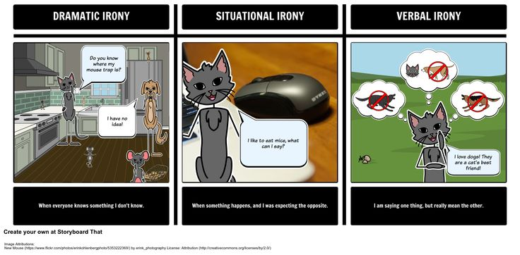 Our storyboard represents the three types of irony - dramatic, situational, and verbal ironies.
