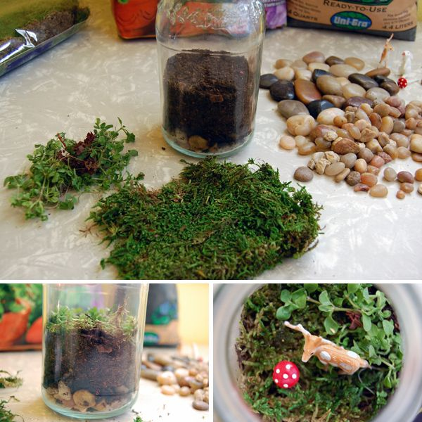 Mason Jar Terrarium. I'm using this for our Sunday School project tommorow; You will reap what you sow.