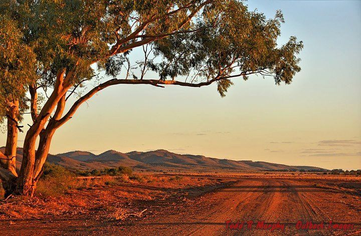 Menindee on the Darling River Outback NSW Australia took this shot - I love the colours of this country :) This is a short couple of hours from home.