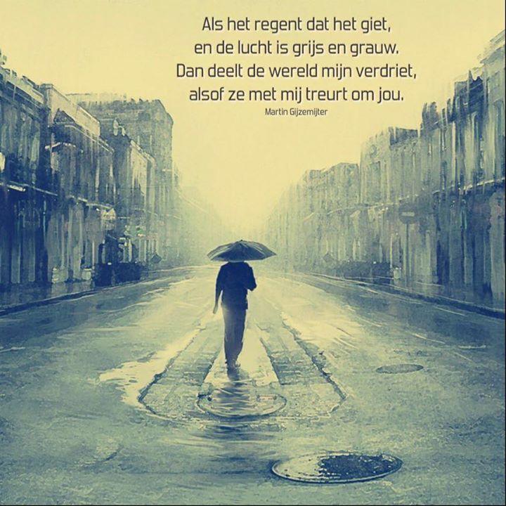 Als het regent dat het giet, en de lucht is grijs en grauw. Dan deelt de wereld mijn verdriet, alsof ze met mij treurt om jou.  www.dichtgedachten.nl