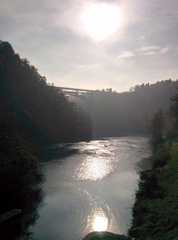 River in the morning fog