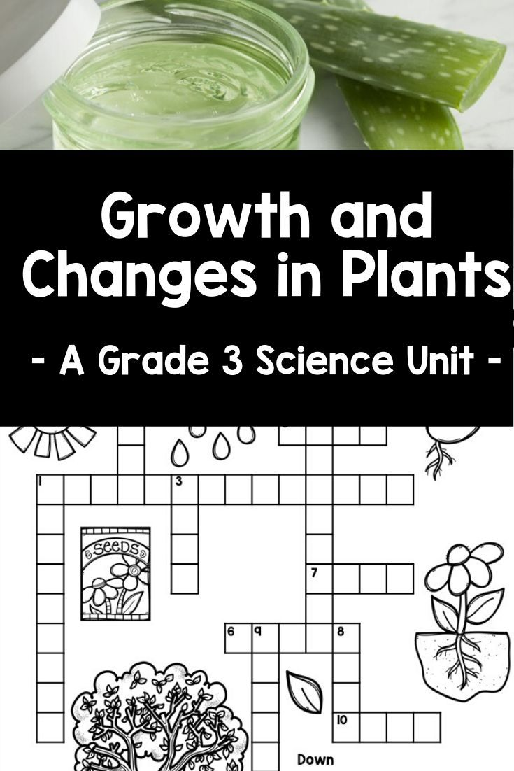 Growth And Changes In Plants Grade 3 Science Grade 3 Science Science Teaching Resources Ontario Curriculum [ 1102 x 735 Pixel ]