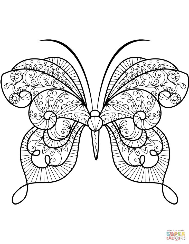 advanced butterfly zentangle | super coloring | butterfly